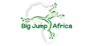Big Jump Africa